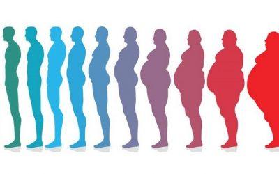 Obesidade é uma doença Multifatorial