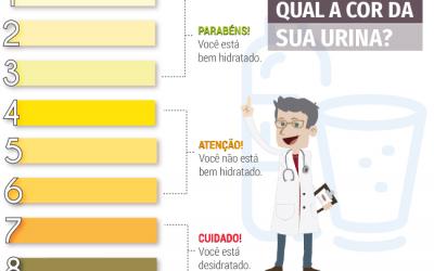 Qual a cor da sua urina?